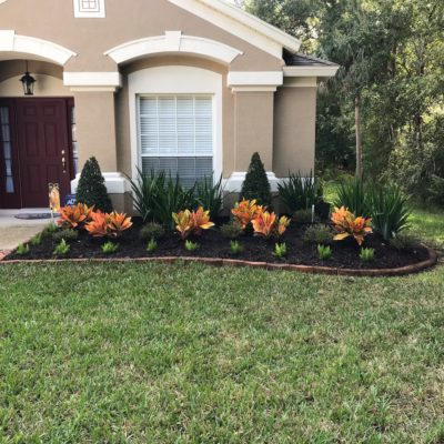 Flower Bed Landscaping Tampa