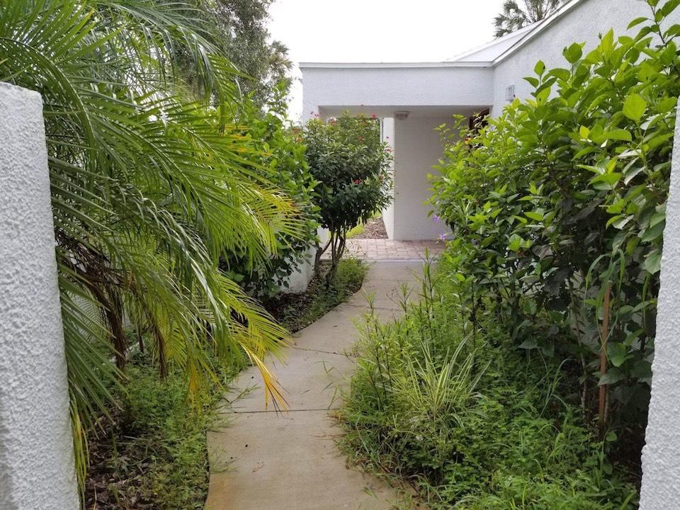 Landscape Mulching Tampa FL - Before