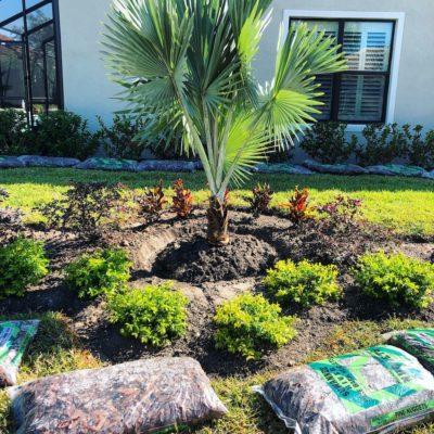 Landscaping Tampa FL
