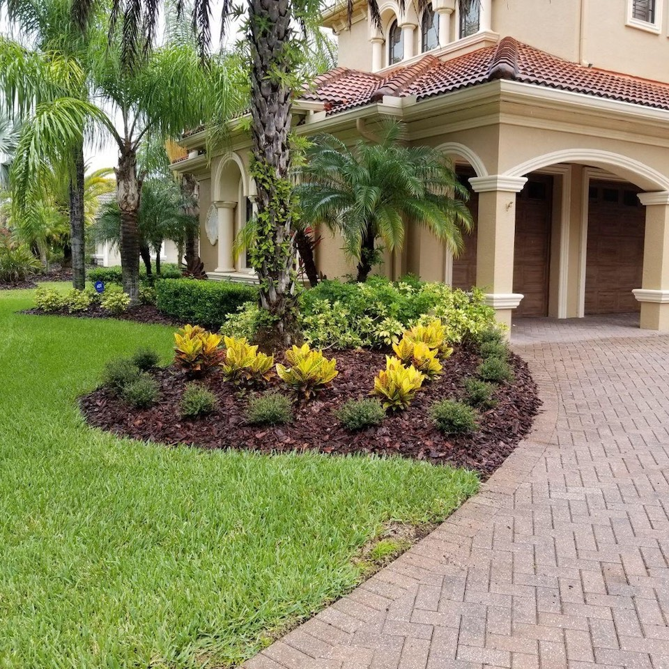 Medscapes Landscaping Tampa, Florida