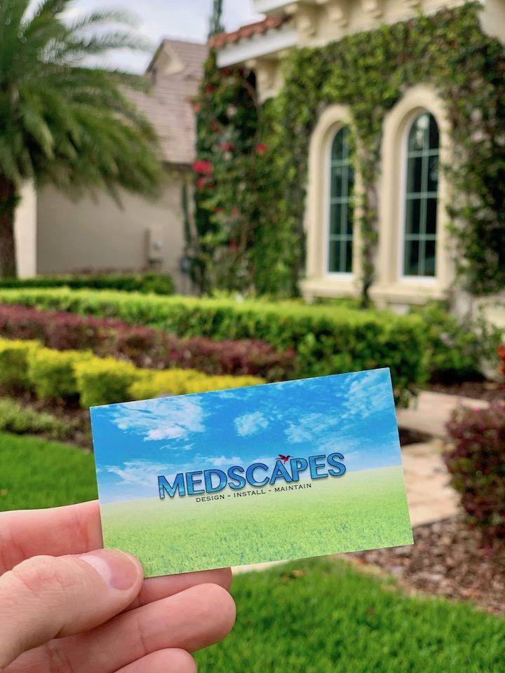 Medscapes Landscape Design Tampa
