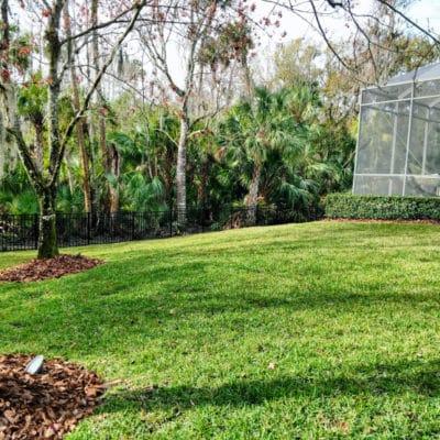Resod Lawn Care Tampa FL