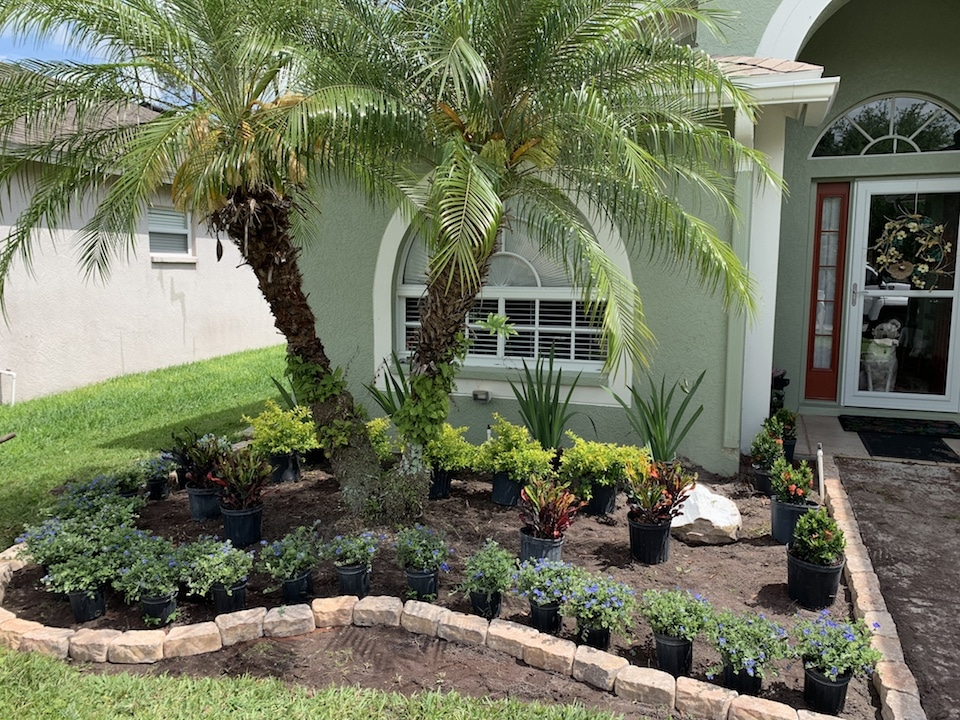 Residential Landscape Design Tampa - Before