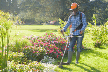 Commercial Landscaping Maintenance Tampa
